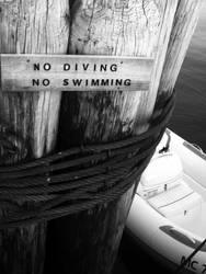 No Diving, No Swimming. by Maang