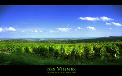 des Vignes
