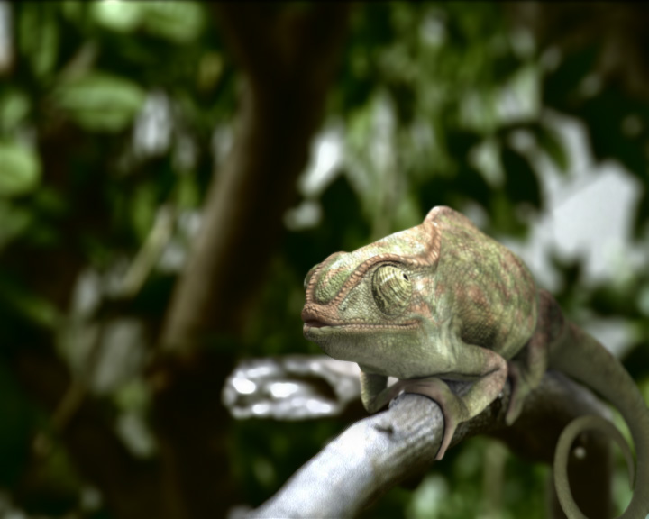 Chameleon by leonuts