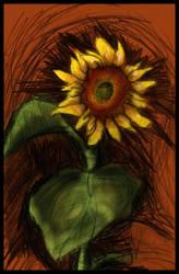 Sunflower by Annetteks