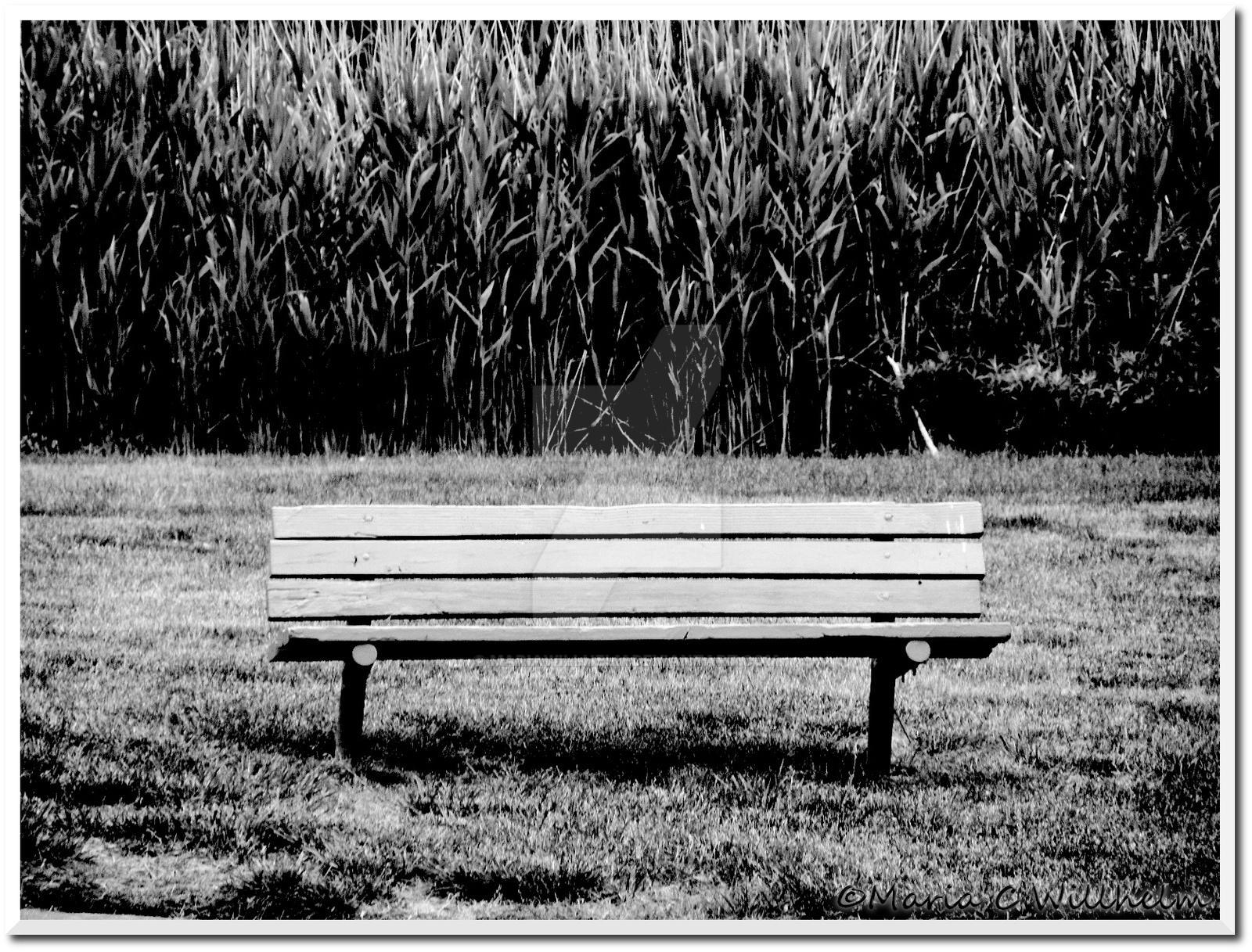 Solitude by MariaWillhelm