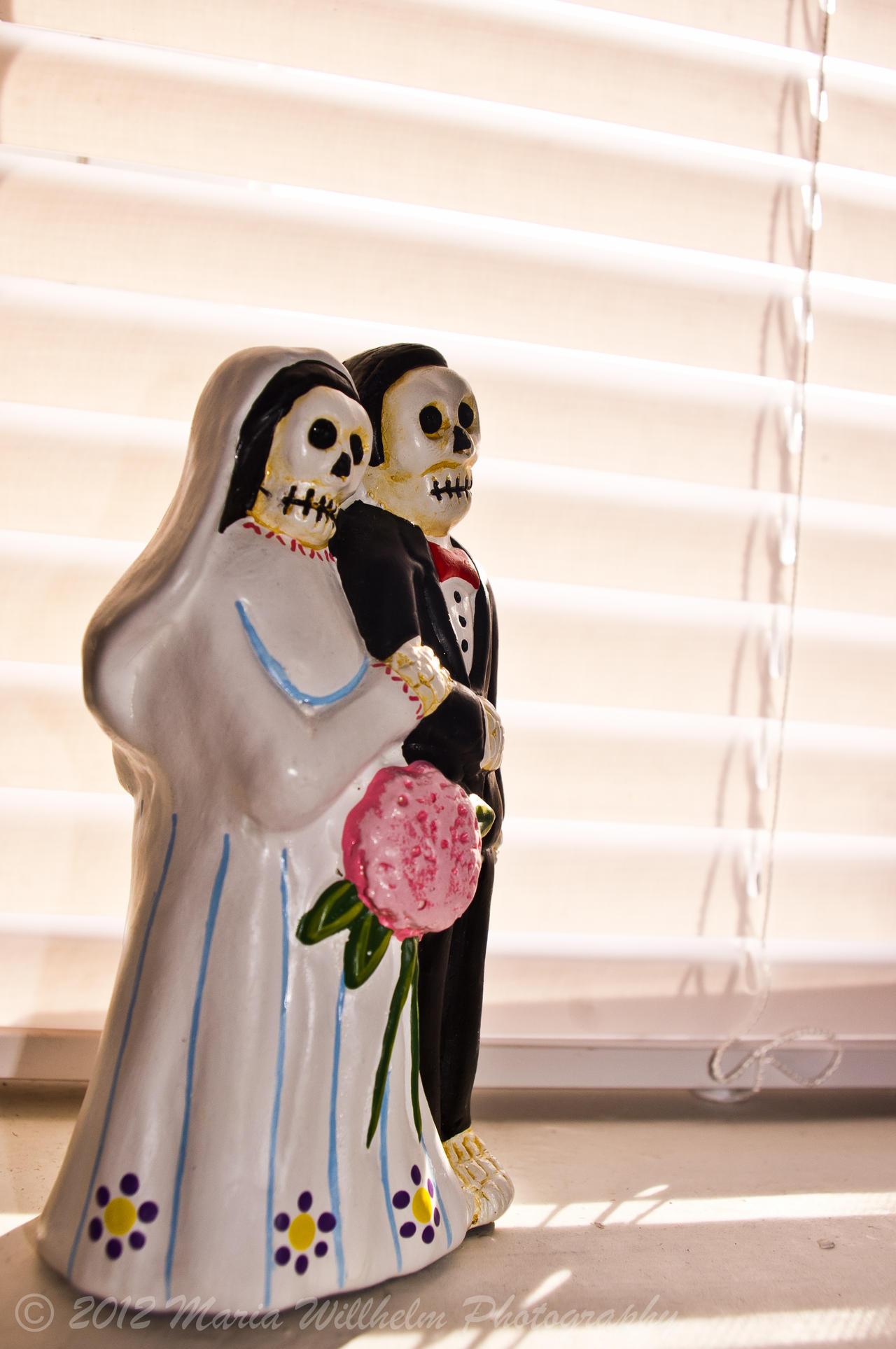 Dia de los Muertos Bride Groom by MariaWillhelm