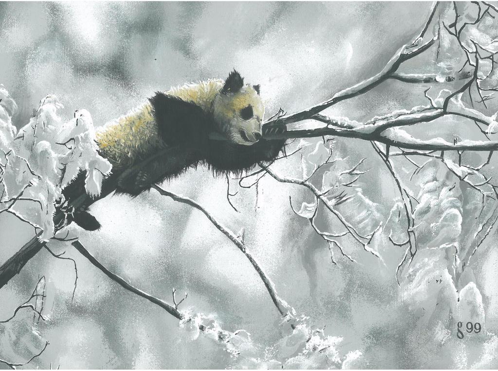 Panda by BlackLabelArt