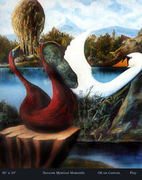 Natures Mystical Moments