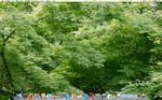 Mah craphouse desktop