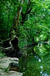 Hartselle Creek 2