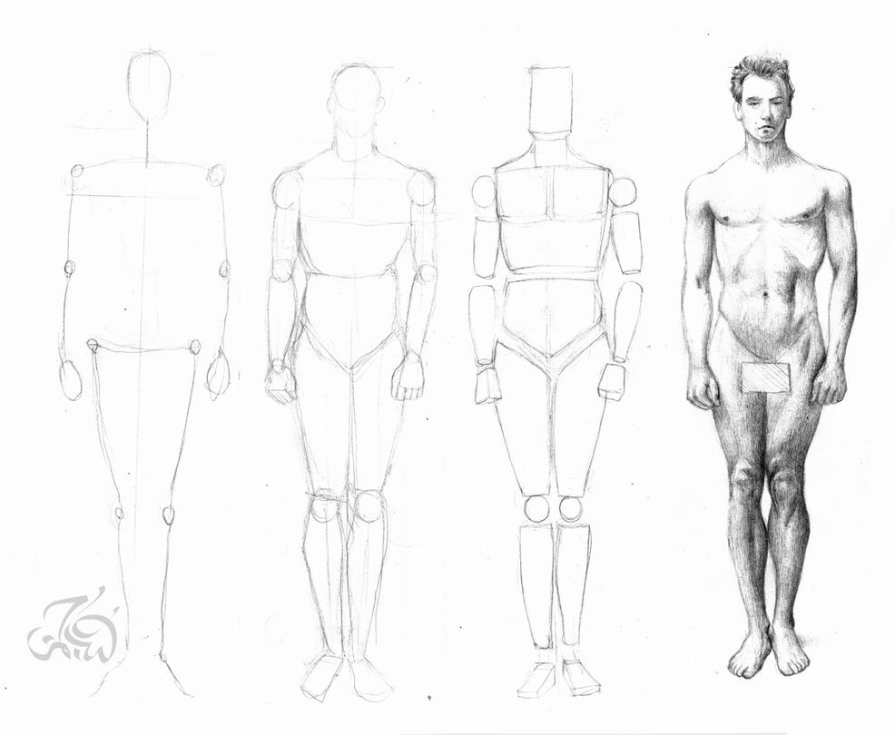 It's just a picture of Nifty Figure Drawing Male