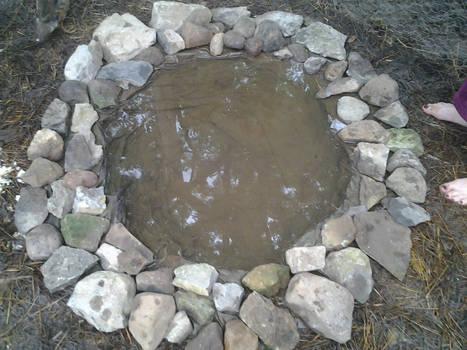 New pond for my mandarin ducks!!