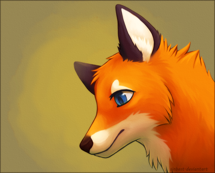 Cute Fox? by sinbast on DeviantArt