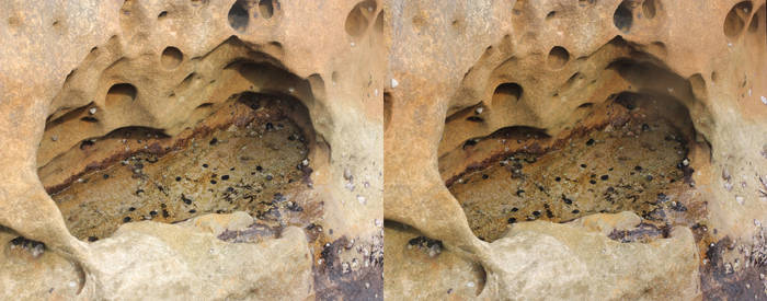 Mackerel Beach rockpool (cross-eye 3D stereogram)