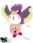 Kirby and Coo the owl