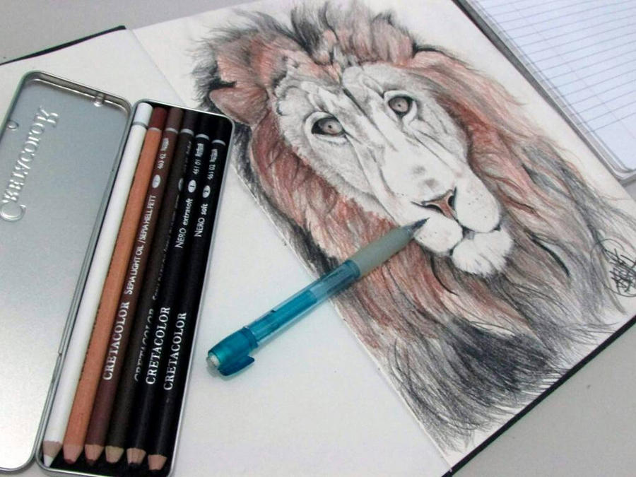 lion sketch  by HAWFX