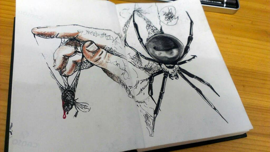spider  by HAWFX