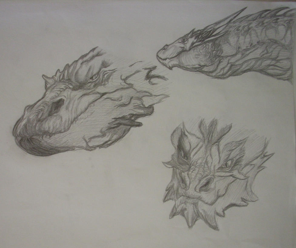 Smaug practice. by kworking