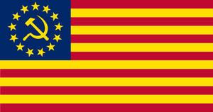 USSA Flag