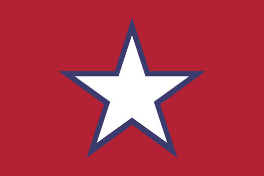 Socialist American Flag