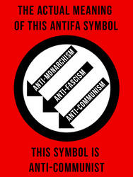 About that popular antifascist symbol...