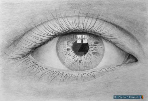 Eye - Graphite drawing