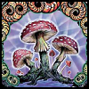 Magic Mushrooms by BassistArtistLoser