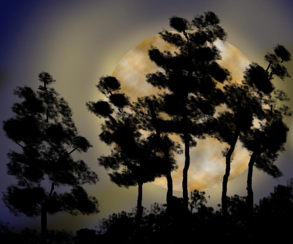 full moon by nwwe