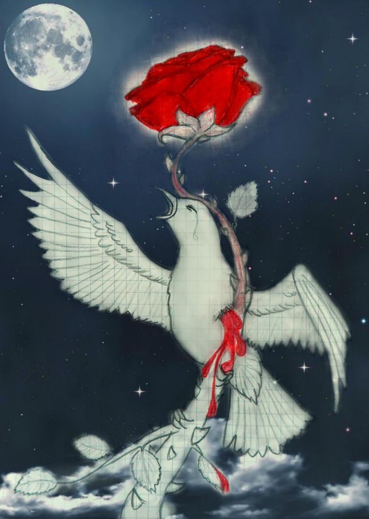 The Nightingale and the Rose by Chukapix