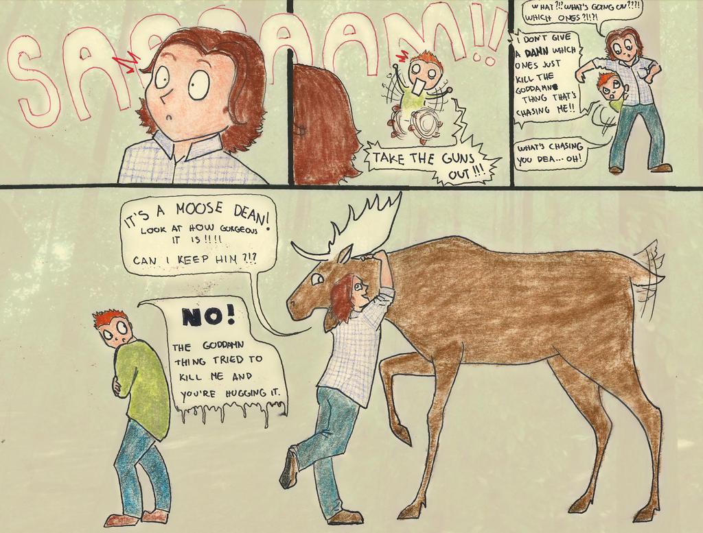 Beware of the moose! by Chukapix