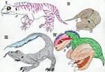 Argo's Animals- Idgris