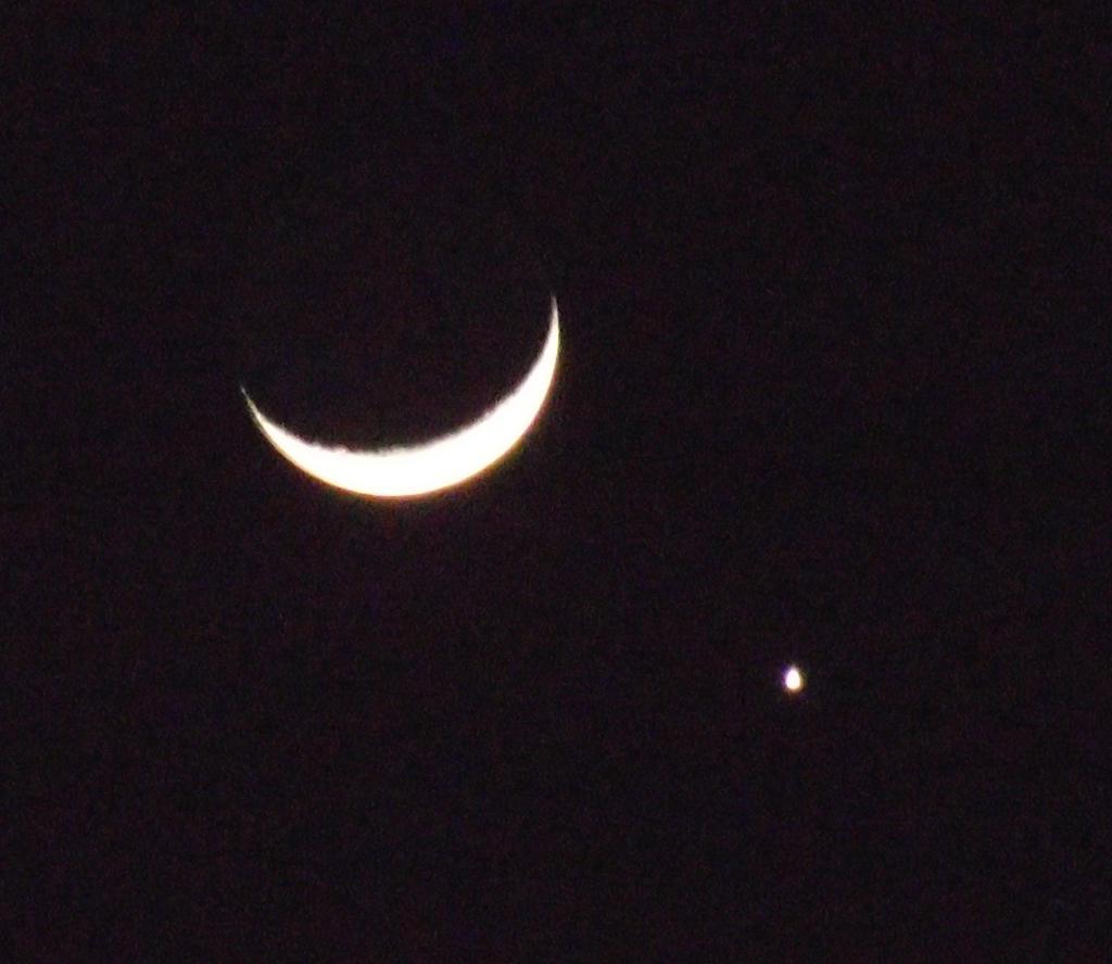 Moon and Partner by Sorello