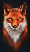 Red Fox or Firefox? by sven-werren