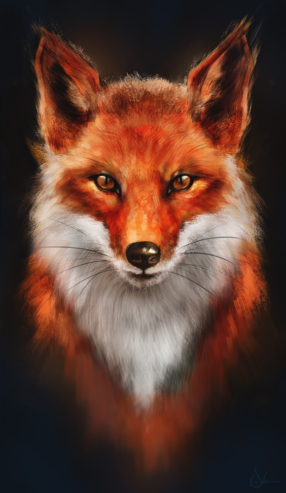 Red Fox or Firefox?