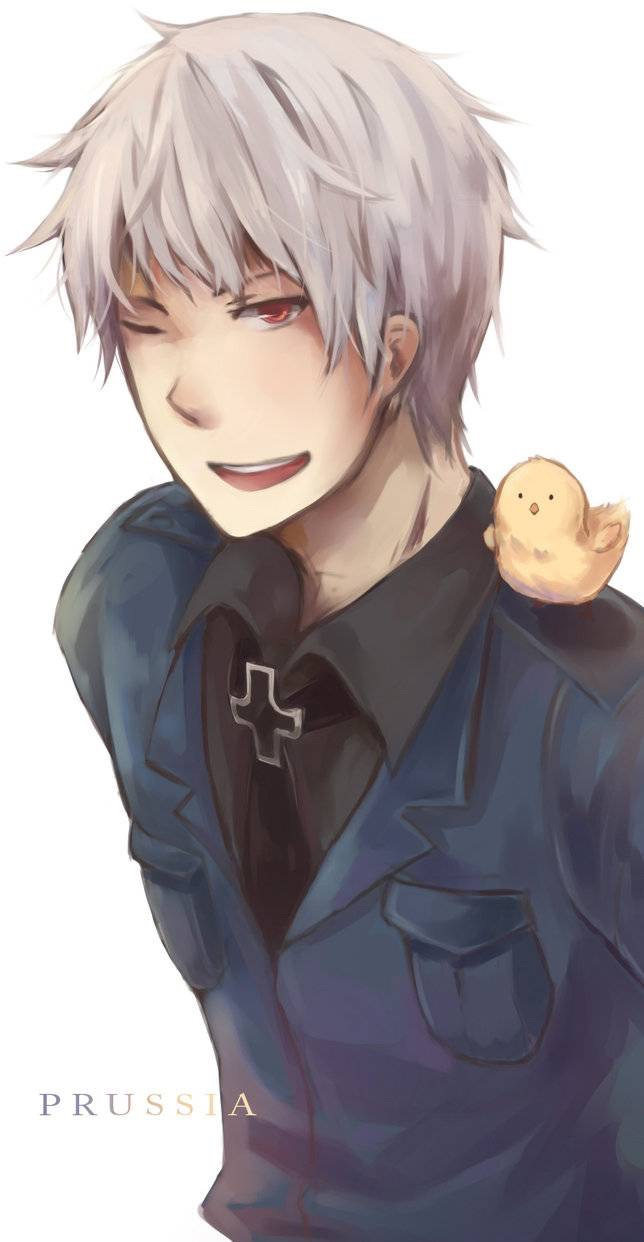Can your pet (Prussia x Shy!reader) by Symmetryrocks on