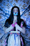 Alice Liddell - Alice Madness Returns by Zelamaart