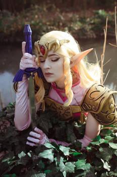 Wake up Link..