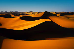 Golden Sands by AzozPhotography