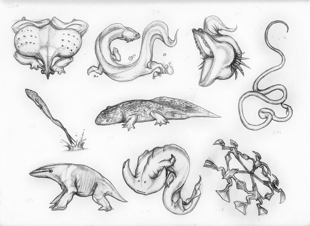 Amphibians Drawings