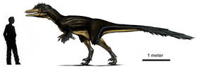 Austroraptor profile by Rodrigo-Vega