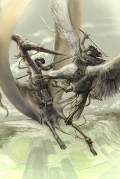 Aerial Duel