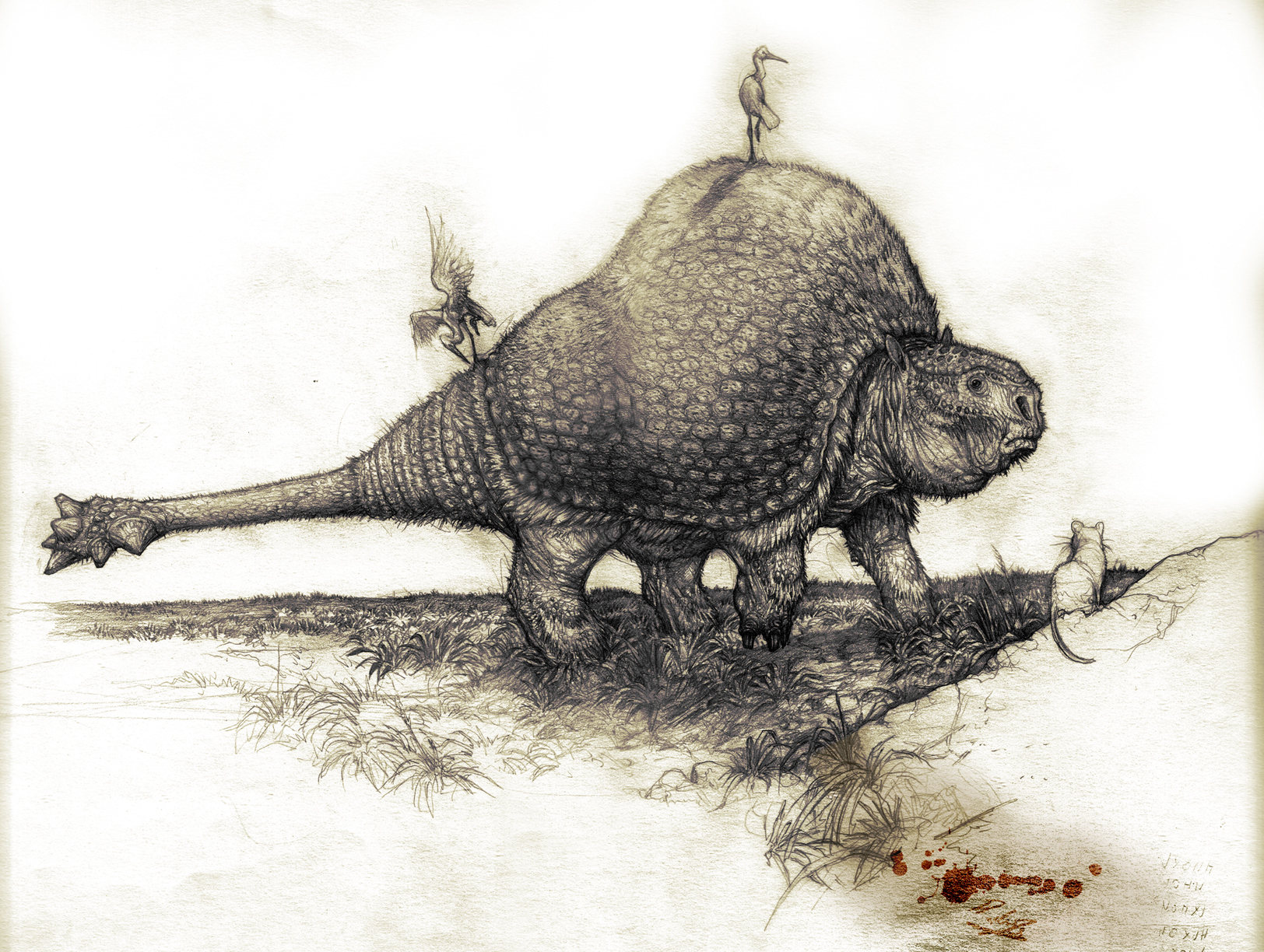 Doedicurus clavicaudatus . by Rodrigo-Vega