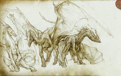 Some Dragons. by Rodrigo-Vega
