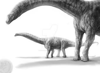 Argentinosaurus huinculensis by Rodrigo-Vega