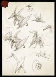 Pterosaurs by Rodrigo-Vega