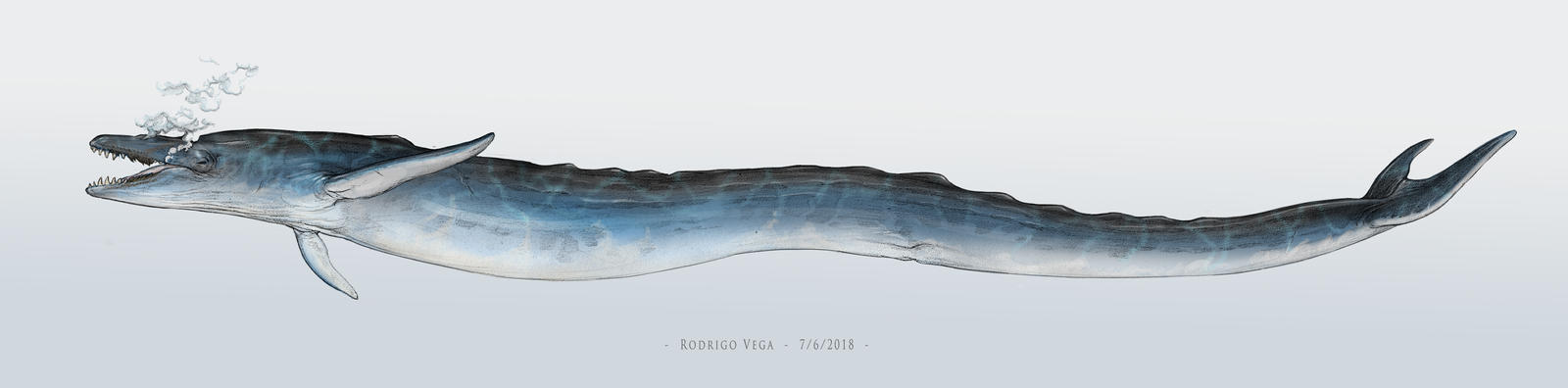Whale Leviathan by Rodrigo-Vega