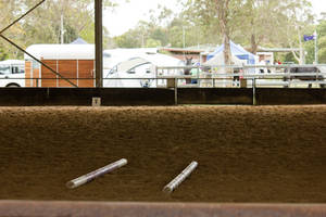 STOCK - Friesian Show 2012-1 by fillyrox