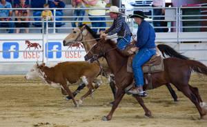 STOCK 2013 Rodeo-120