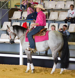 STOCK - 2014 Total Equine Expo-23
