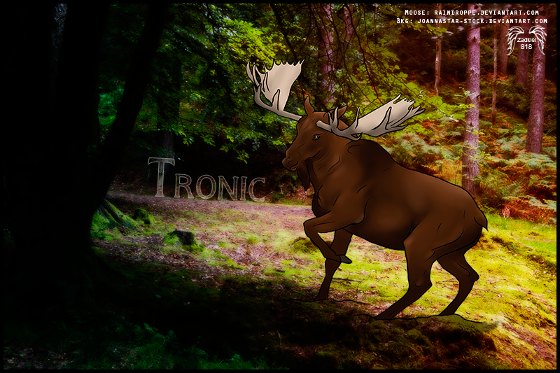 HP - Tronic Moose by fillyrox