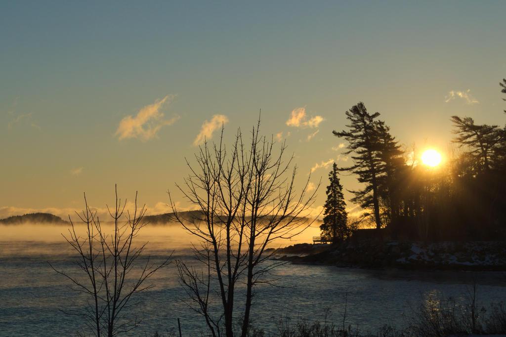 Misty Morning by SkepticRaven