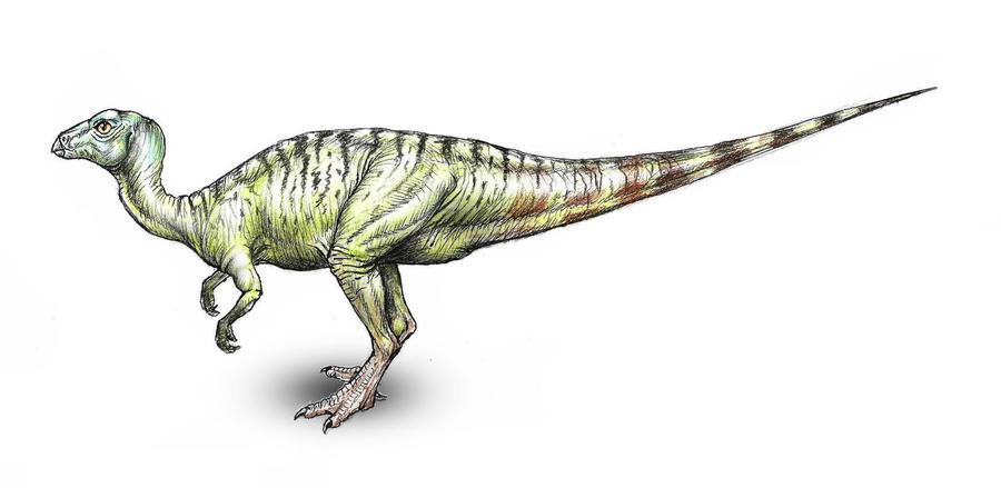 Yueosaurus tiantaiensis by MALvit