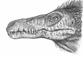 Velociraptor osmolskae head by MALvit