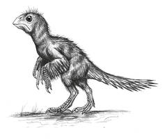 Gigantoraptor  baby by MALvit